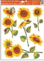 Okenní fólie - Slunečnice - různé motivy - 888
