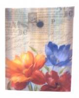 Plastový obal A6 vertikální s drukem - Jardins De Paris -1644-0277