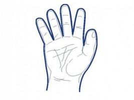 PE rukavice velké 50 ks