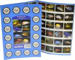 Pexeso - Akvarijní ryby - 1025