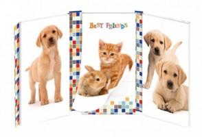 Zápisník kombinovaný Argus - Best Friends- 1451-0259