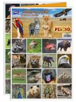 Pexeso - Zvířátka ze ZOO - 5300896