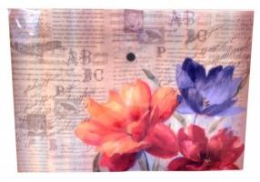 Plastový obal A4 s drukem - Jardins De Paris -1650-0277