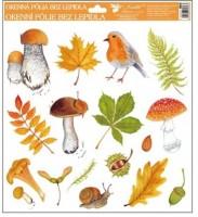 Okenní fólie - Podzim - různé motivy - 804