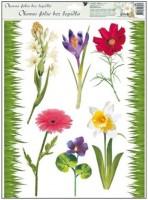 Okenní fólie - tráva a květiny - 886