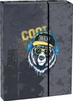Box na sešity s klopou A4 Cool bear - Stil1523737